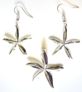 flowers-silver-plated-set